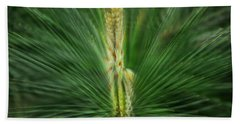 Pine Cone And Needles Beach Towel