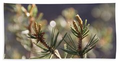 Beach Towel featuring the photograph Pine by David S Reynolds