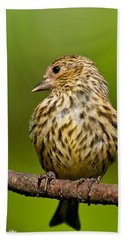 Pine Siskin With Yellow Coloration Beach Sheet