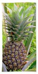 Pineapple Plant Beach Towel
