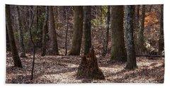 Pinetrees 1 Beach Sheet