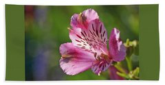 Pink Alstroemeria Flower Beach Towel