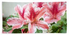Beach Towel featuring the photograph Pink Azaleas by Todd Blanchard