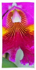 Pink Cattelaya Orchid Beach Towel by Lehua Pekelo-Stearns