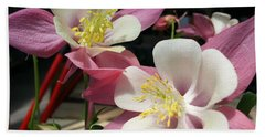 Beach Towel featuring the photograph Pink Columbine by Caryl J Bohn