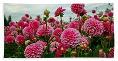 Pink Dahlia Field Beach Towel