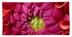 Pink Dahlia Variation Beach Sheet by Susan Garren