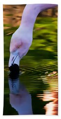 Pink Flamingo Ripples And Reflection Beach Towel