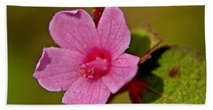 Beach Sheet featuring the photograph Pink Flower by Olga Hamilton