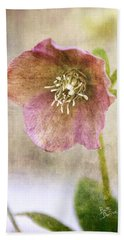 Pink Hellebore Beach Sheet