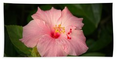 Pink Hibiscus Beach Sheet