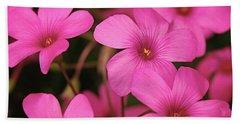 Pretty Pink Phlox Beach Sheet