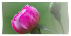Pink Rose And Raindrops Beach Towel