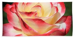 Beach Towel featuring the photograph Pink Rose by Athala Carole Bruckner