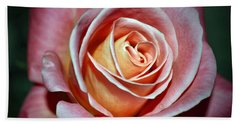 Beach Towel featuring the photograph Pink Rose by Savannah Gibbs