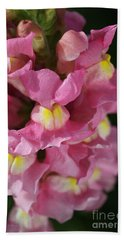 Pink Snapdragon Flowers Beach Towel