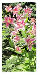 Pink Stargazer Lilies-greeting Card Beach Sheet