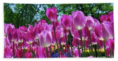 Beach Sheet featuring the photograph Pink Tulips by Allen Beatty
