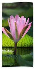 Pink Water Lilly Beach Sheet