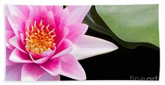 Pink Water Lily And Pad Beach Sheet by Rebecca Cozart