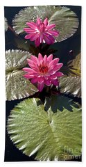 Pink Water Lily IIi Beach Towel