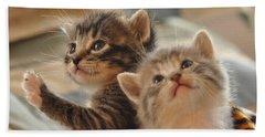 Playful Kittens Beach Towel