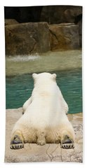 Playful Polar Bear Beach Towel by Adam Romanowicz