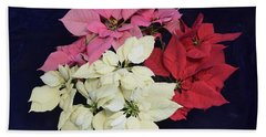 Poinsettia Tricolor Beach Towel