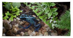 Poison Dart Frog Beach Towel by Carol Ailles