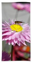 Beach Towel featuring the photograph Pollination by Cathy Mahnke