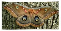 Polyphemus Moth Beach Sheet