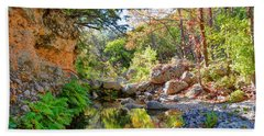 Pond At Lost Maples Beach Towel