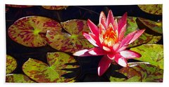 Beach Towel featuring the photograph Pond Lily by Nick Kloepping