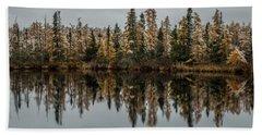 Pond Reflections Beach Sheet