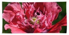 Poppy Pink Beach Towel by Jim Hogg