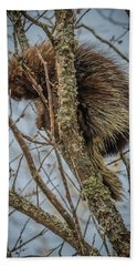 Porcupine Beach Towel
