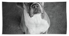Portrait Of A Boxer Dog Beach Towel