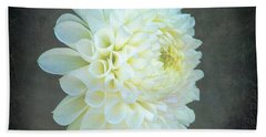 Portrait Of A Dahlia Beach Towel