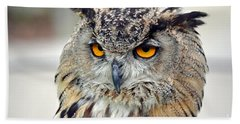 Beach Towel featuring the photograph Portrait Of A Great Horned Owl II by Jim Fitzpatrick