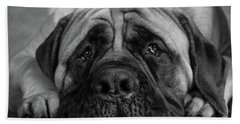 Portrait Of A Mastiff Beach Towel