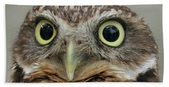 Portrait Of Burrowing Owl Beach Towel