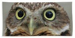 Portrait Of Burrowing Owl Beach Sheet