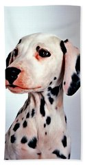 Portrait Of Dalmatian Dog Beach Sheet by Lanjee Chee