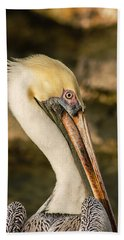 Posing Pelican Beach Towel