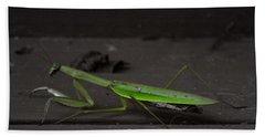 Praying Mantis 2 Beach Towel
