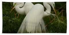 Preening Pair Beach Sheet by Myrna Bradshaw