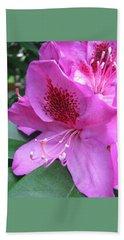 Beach Sheet featuring the photograph Pretty In Pink by Brooks Garten Hauschild