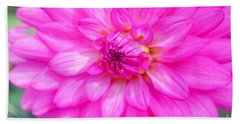 Pretty In Pink Dahlia Beach Towel by Peggy Franz