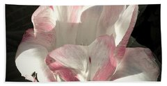 Beach Sheet featuring the photograph Pretty In Pink by Photographic Arts And Design Studio
