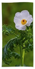 Prickly Poppy Beach Towel by Gary Holmes